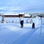 Vinterferieuke 8 på Golsfjellet